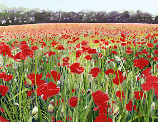 Poppy Day Painting - Art for Remembrance Day Song