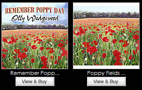 View Art & Cards Of Poppy Painting supporting The Alzheimer's Society